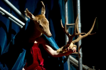 kataline patkai,danse,studio theatre de vitry