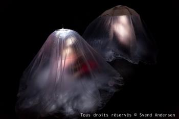 Insomnie-11.jpg